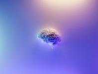Zostać czy uciekać? Dowiedz się jak działa mózg w procesie on-boardingu. Model SCARF Davida Rocka